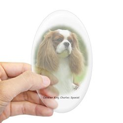 CafePress Cavalier King Charles Spaniel 9F97D-19 Sticker (Ov Oval Bumper Sticker, Euro Oval Car Decal
