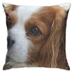 Throw Pillow Cover Cute Cavalier King Charles Spaniel Decorative Pillow Case Decor Square 18×18 Inch Cushion Pillowcase