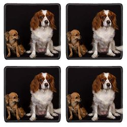 MSD Drink Coasters 4 Piece Set Image ID: cavalier king charles and chihuahua Image 33300872 Stain Resistanc