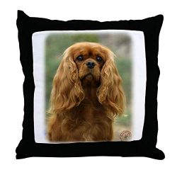 CafePress Cavalier King Charles Spaniel 9F51D-10 Throw Pillo Decor Throw Pillow (18″x18″)