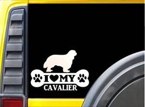 EZ-STIK Cavalier Bone L098 8 inch Cavalier King Charles Spaniel Collar Dog Decal