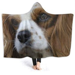 "XNLHQH IJ Hooded Blanket, Wearable Hood Throw Blankets Wrap,Cavalier King Charles Spaniel Print Soft Kids Blanket Gift Cozy Magic Cloak 50″"" by 40"