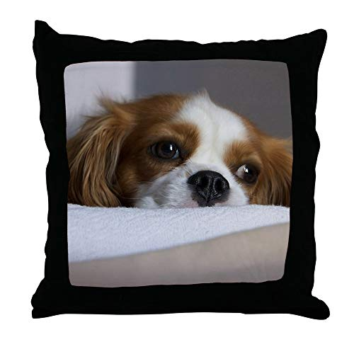 CafePress-Cavalier King Charles Spaniel-Throw Pillow