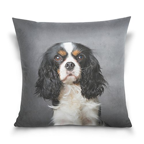 ALAZA My Daily Cavalier King Charles Spaniel Dog Square Throw Pillow Case Cotton Velvet Cushion Cover 20×20 inch