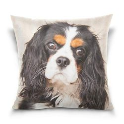 Mohado Puppy Cavalier King Charles Spaniel Square Decorative Throw Pillow Cover Case Cushion Cover for Sofa Bedroom Couch Car Double-Sided Printing 20 x 20 inch