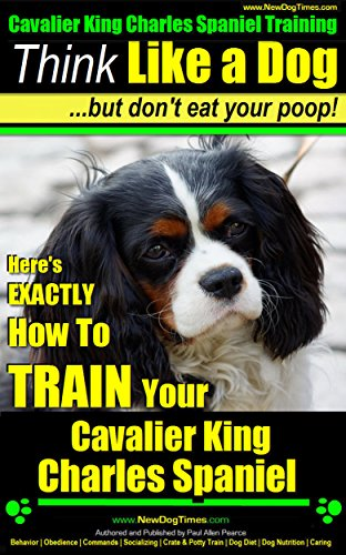 Cavalier King Charles Spaniel, Cavalier King Charles Spaniel Training A: Think Like a Dog, But Don't Eat Your Poop! | Cavalier King Charles Spaniel: How To Train Your Cavalier King Charles Spaniel