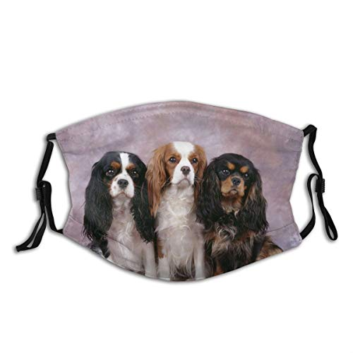 Cavalier King Charles Spaniels Cloth Face Mask with Filter Pocket Washable Face Bandanas Balaclava Reusable Fabric Protection
